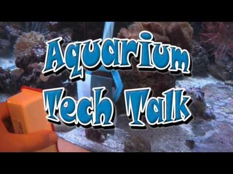 Polish Scratches Out of Acrylic Aquarium, LA Fishguys Tech Talk Episode 149, part 1