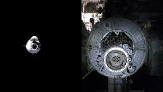 SpaceX Crew-1 docking