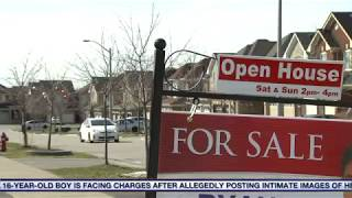 Home sales plunging in parts of GTA, data shows