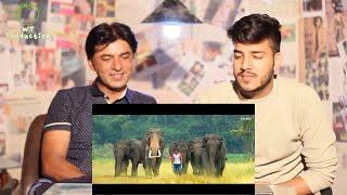 Pakistani Reacts To | Junglee Official Trailer | Vidyut Jammwal, Pooja Sawant & Asha Bhat | R Expres