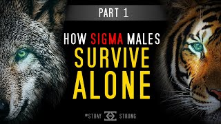The 2 Sigma Male Paths: Lone Wolf vs Tiger (Part 1) | What Schools Failed to Teach You...
