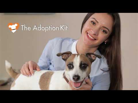 The Adoption Show - episode 11