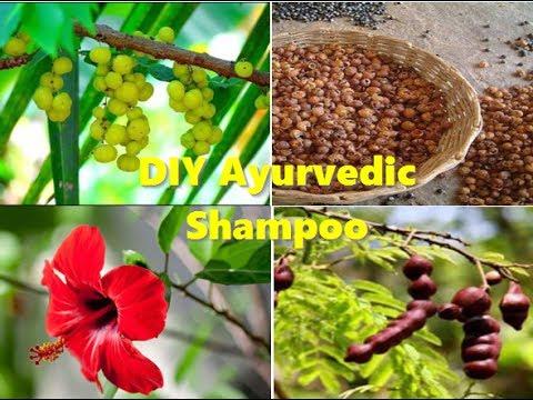 How to make 100% ayurvedic reetha shikakai amla shampoo for fast hair growth.