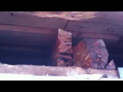 Step 1 Rotten roof eve repair made easy Partner WB