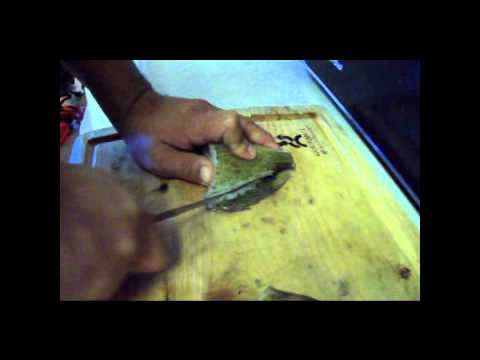 how to fillet clean sun fish panfish easy way no need to descale