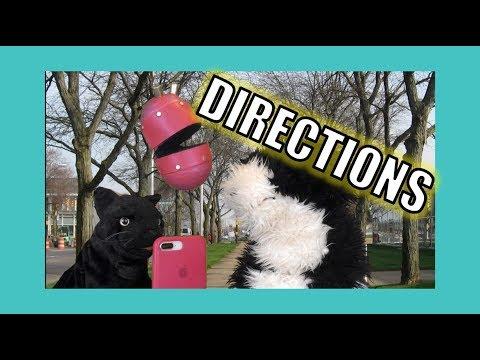 Directions:  George the Self Esteem Cat