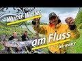 Welsangeln In Deutschland Wurm Waller Am Fluss Radau Macher Montage By Stefan Seuss
