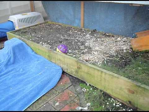 rabbit hutch rabbit run Super size rabbit hutch