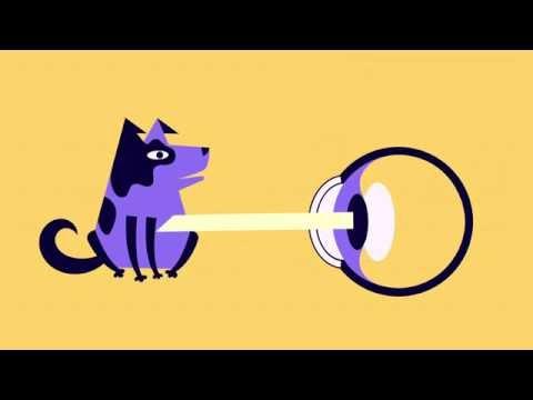 How Human Eye Works