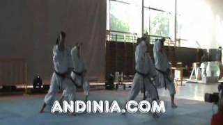 Heiku - Kata Karate Shito-ryu - Heiko Bunkai