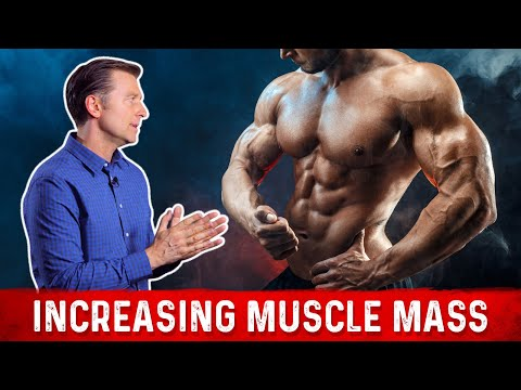 Increasing Muscle Mass (myofibrillar hypertrophy)