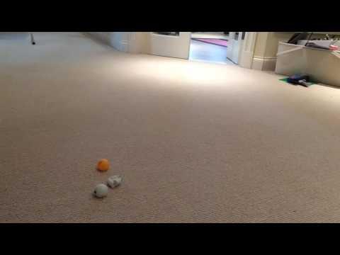 Ping Pong Ball Smoke Grenade!