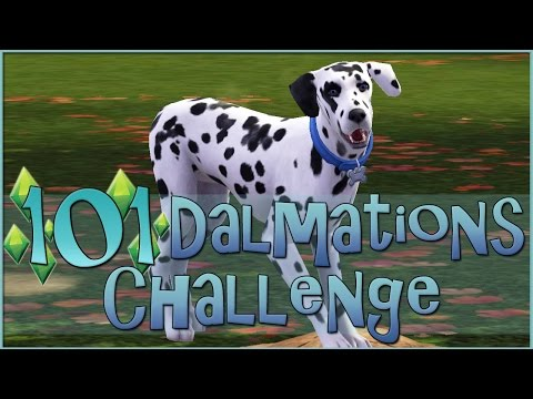 Sims 3 || 101 Dalmatians Challenge: Trio of New Puppies! - Episode #21