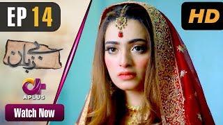 Bezuban - Episode 14 | Aplus Dramas | Usama Khan, Nawal Saeed, Junaid, Mahlaqa | Pakistani Drama