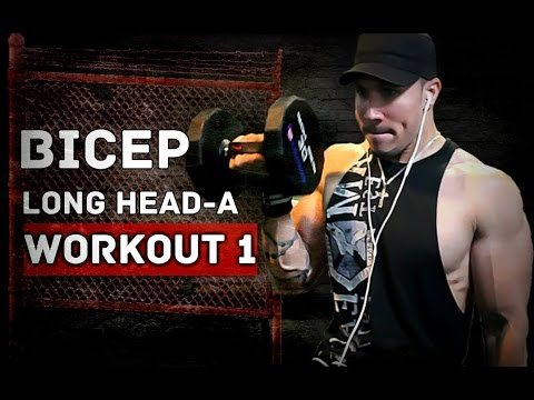 4 WEEK BICEP BUILDING PROGRAM - BICEP LONG HEAD-A #BICEPCHALLENGE