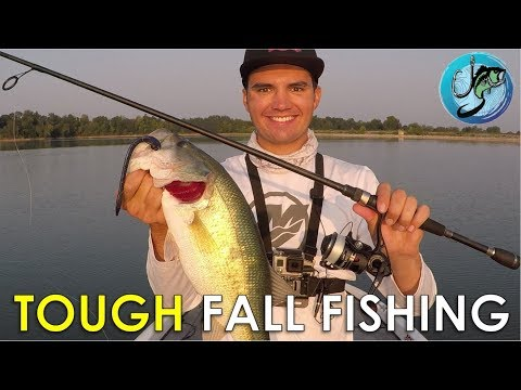 How To Make Inactive Fall Bass Bite! | Fall Fishing Tips