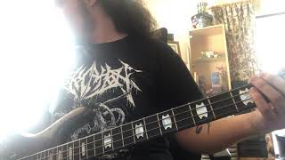 In Bloom - Nirvana (Bass Cover)
