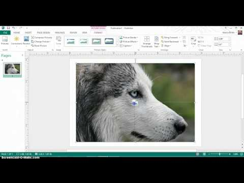 Creating Logos in Microsoft Publisher