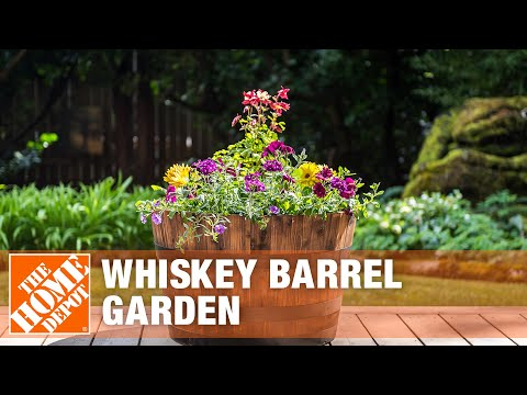 Whiskey Barrel Planter Ideas - The Home Depot