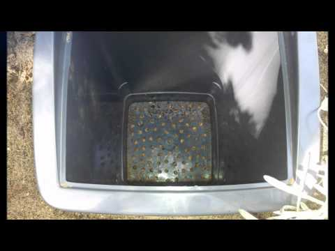 Dog Poo Composter