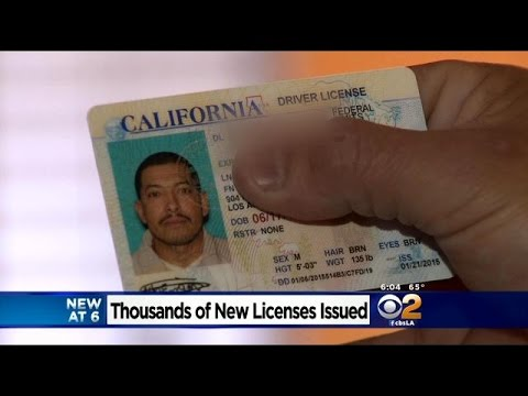 Undocumented Immigrant Shares How AB60 Driver's License Has Changed His Life