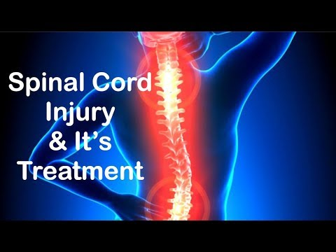 Spinal cord Injury & Spinal cord Injury Treatment