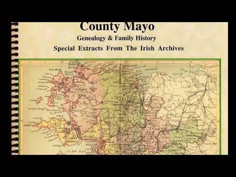 Limerick Ireland genealogy; Deely (Daly) name; Irish census substitutes; Danny Boy Banned IF59
