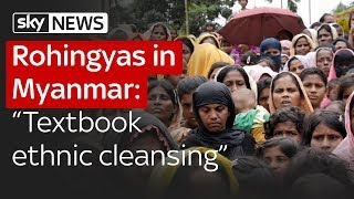 """Rohingyas in Myanmar: """"Textbook example of ethnic cleansing"""""""