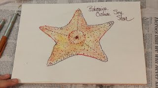 How To Draw A Fish The Easy Way Cushion Starfish