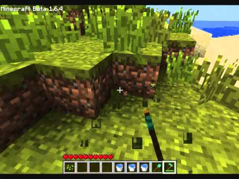 Minecraft- How to find wheat seeds and make a wheat farm