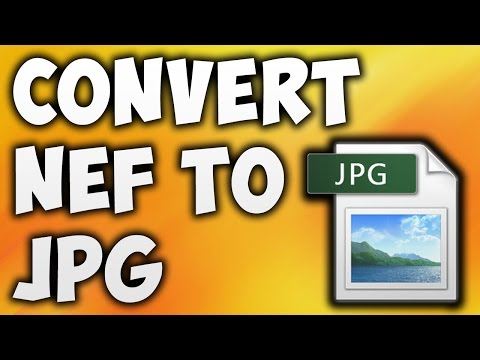 How To Convert NEF To JPG Online - Best NEF To JPG Converter [BEGINNER'S TUTORIAL]