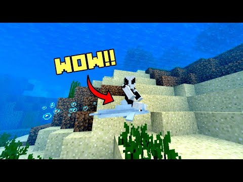 How To Ride Dolphins In Minecraft Bedrock Edition!!!