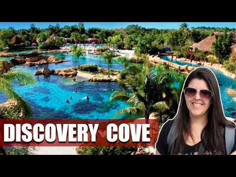 Como é o Discovery Cove em Orlando