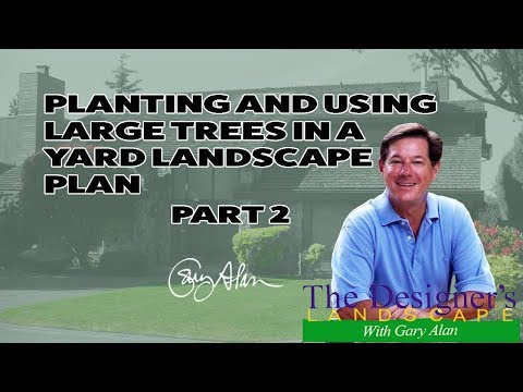How to design and install a landscape plan with Large Trees Pt 2