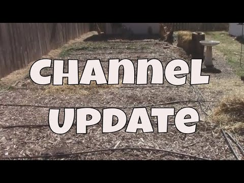 Midwest Gardener Channel Update - A Few Plans and What's Going On