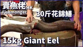 【賣魚佬 HK】 30斤野生花錦鱔花錦皇  【Fishmonger HK】 How to fillet Giant Eel 巨大うなぎ 大きな魚 Street Food 漁民海鮮 西環魚王