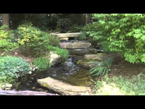How To | Design Backyard Waterfall | Stream | Baltimore Maryland MD | Pond Service Company