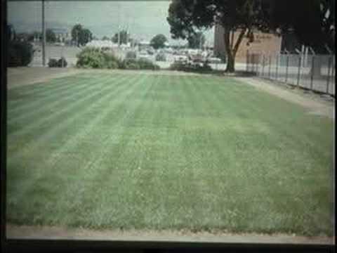 Turfgrass Management Part I