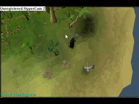 how to catch a gecko on runescape