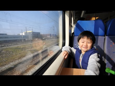 On the Train from Amsterdam to Zaanse Schans
