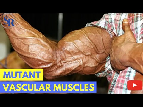 💪 5 Proven Tips To Get Bigger, Harder, More Vascular Muscles