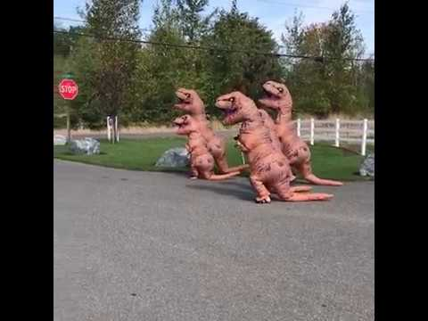 Parents in Dinosaur Costume to make their Daughter Happy