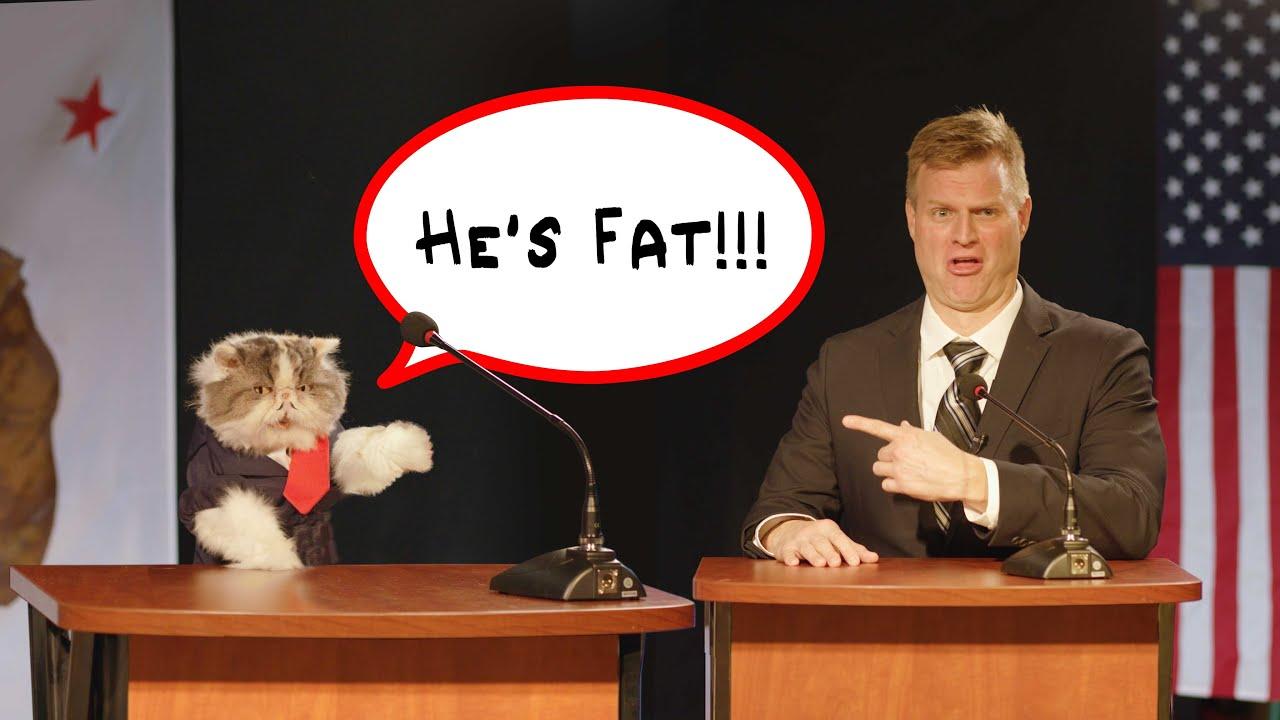Cat Runs for Mayor