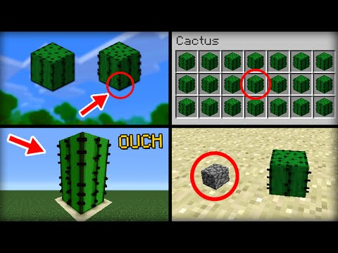 ✔ Minecraft: 10 Things You Didn't Know About the Cactus