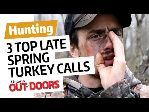 3 top turkey calls for late-spring toms
