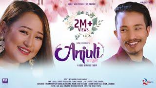 Sunil Chhidal / Melina Rai's New Song || ANJULI || Ft. Melina Rai,Sunil Chhidal