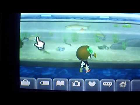 Animal Crossing City Folk Golden Fishing Rod and fish tour