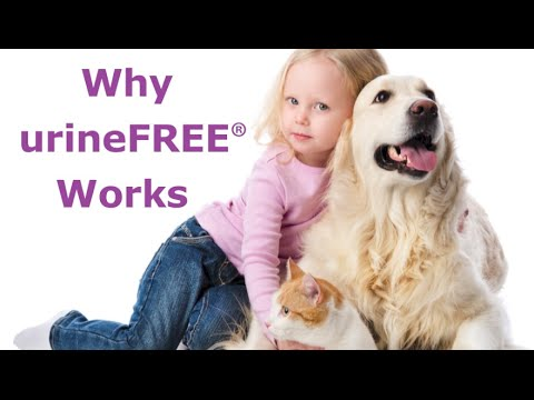 Why urineFREE Works: Removing Urine Odours and Stains