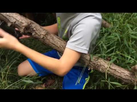 DIY teepee fort