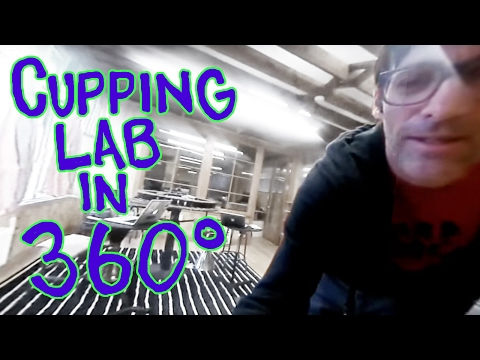 Cupping Lab in 360 Degrees